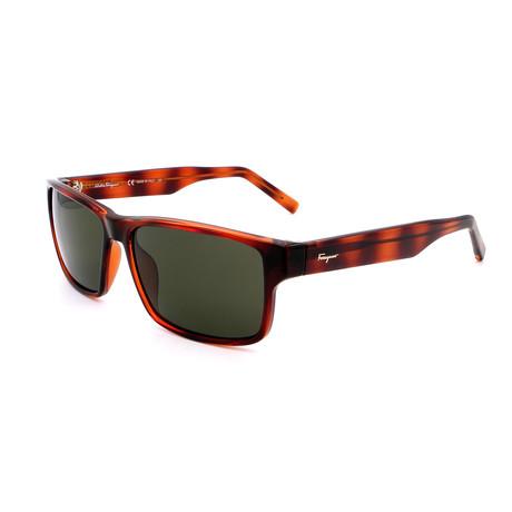 Men's SF960S-214 Rectangular Sunglasses // Dark Havana + Tortoise