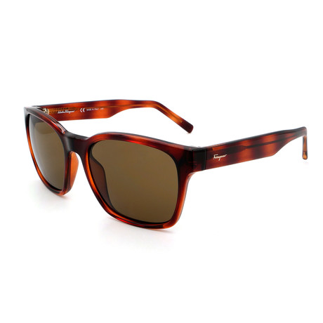 Men's SF959S-214 Square Sunglasses // Dark Havana + Tortoise