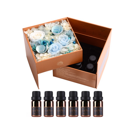 Laugh At Confusion // Immortal Flower Gift Set + 6 Essential Oils