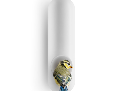 Wall Mounted Bird Feeder Tube (1912553 571006) photo