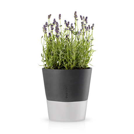 Self Watering Herb Pot // Nordic Gray (20cm)