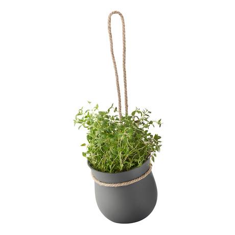 GROW-IT Herb Pot (Gray)