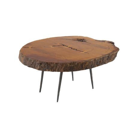 Burled Wood Coffee Table v.2