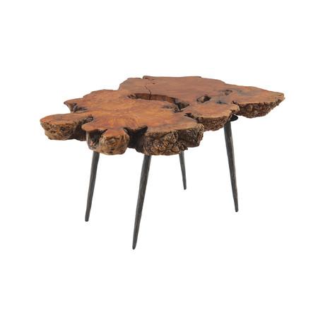 Pradoo Burled Wood Side Table