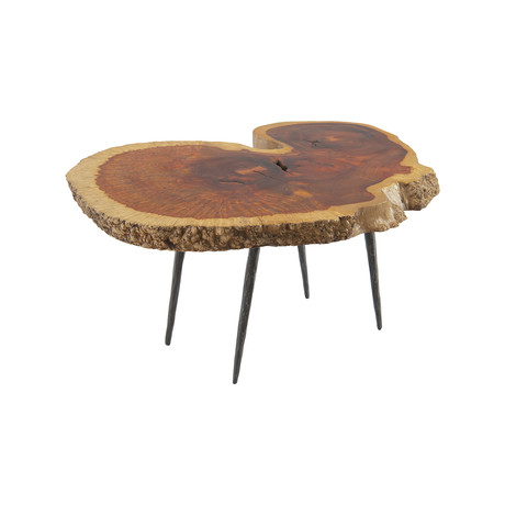 Burled Wood Coffee Table v.1