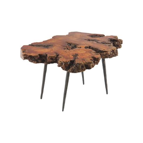Pradoo Burled Wood Coffee Table v.1