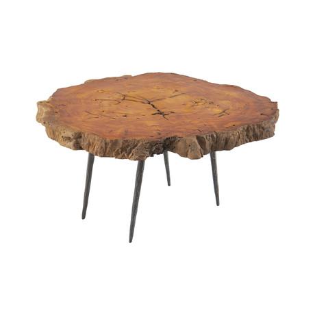 Burled Wood Coffee Table v.3
