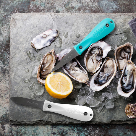 Professional Edition Oyster Knife