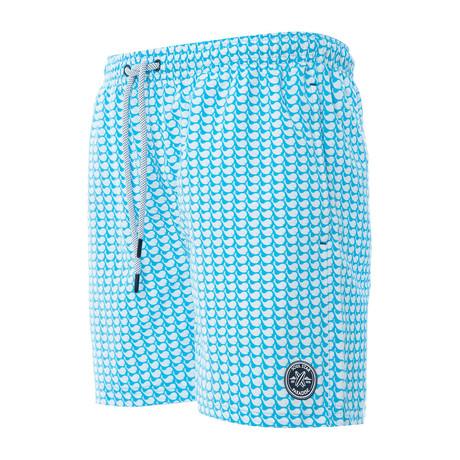 Spelt Swim Shorts // Mint (S)