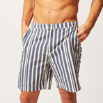 The Boardshort // Blue + Cream Stripe (S)