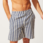 The Boardshort // Blue + Cream Stripe (M)