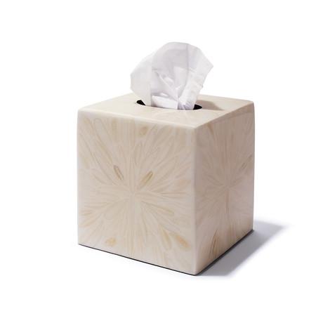 Light Almendro Tissue Box