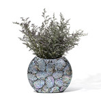 Mother Of Pearl Symmetry Vase