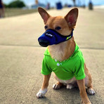K9 Mask® Air Filter Mask for Dogs (S)