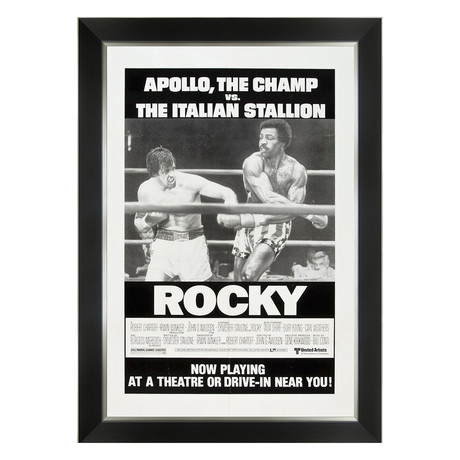 Rocky // Framed Canvas Print