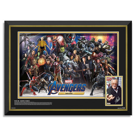 Stan Lee // Limited Edition Autographed Display // Marvel Avengers MCU Characters