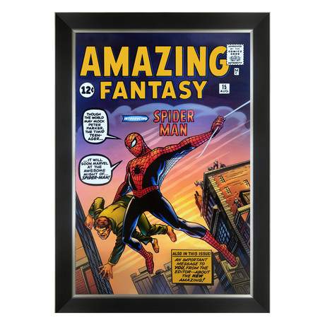 First Appearance of Spider Man // Framed Canvas Art Print
