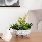 Star Glazed // Ceramic Footed Succulent Pot (White)