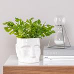 Face Shape // Ceramic Drop Pot Planter // White