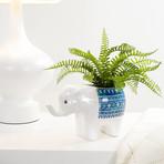Parading Elephant // Ceramic Drop Pot Planter