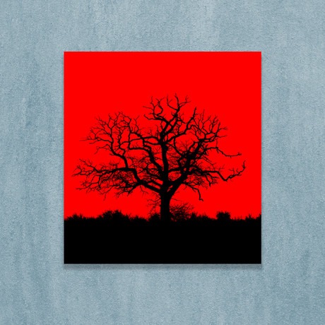 "Lonely Tree (10""W x 10""H x 1""D)"