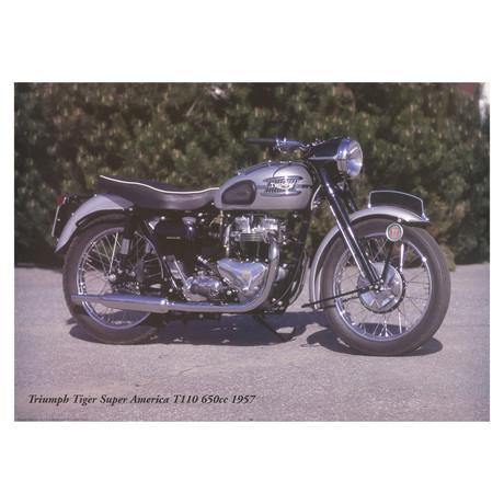 Triumph Tiger Super America T110 650cc 1957 // Forlag Hakan Eriksson