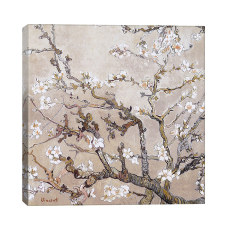 "Almond Branches In Bloom San Remy, C. 1890 (tan) (26""W x 26""H x 1.5""D)"