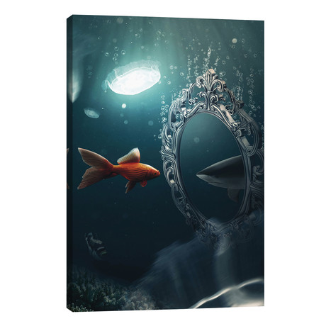 The Mirror Imagination // Zenja Gammer