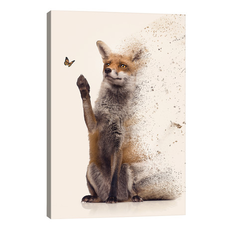 The Dispersion Fox // Zenja Gammer