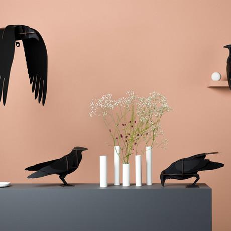 Ravens Jack // Mini Shelf Unit // Brushed Black