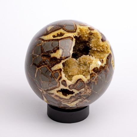Madagascar Septarian Crystallized Sphere