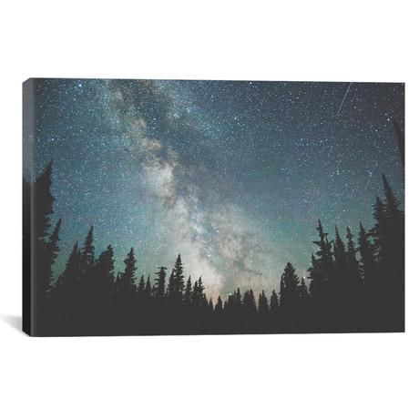Stars Over The Forest III // Luke Anthony Gram