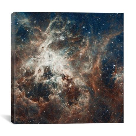 "Prolific Star-Forming Region, 30 Doradus (Tarantula Nebula) (Hubble Space Telescope 22nd Anniversary Image) // NASA (26""W x 26""H x 1.5""D)"