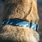 Nobo Waterproof Collar // Pathfinder
