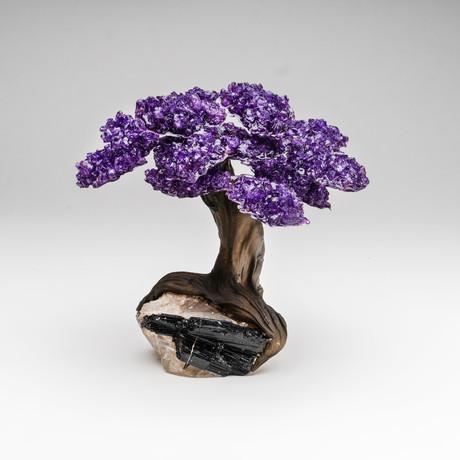 The Grounding Tree // Genuine Amethyst Tree + Black Tourmaline Matrix