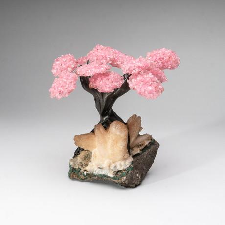 The Wisdom Tree // Genuine Rose Quartz + Calcite Matrix // Custom v.2