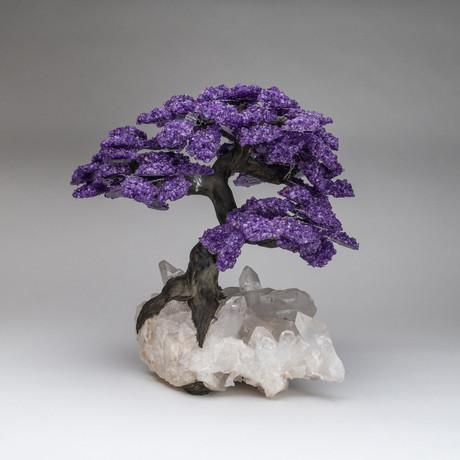 The Relaxation Tree // Genuine Amthyst Tree + Quartz Crystal Matrix // Custom // XL