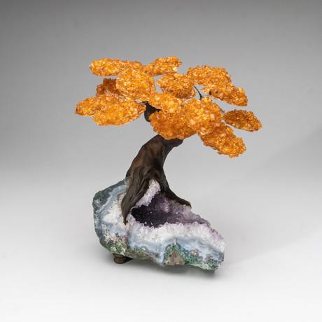 The Money Tree // Genuine Citrine Tree + Amethyst Matrix // Custom v.3