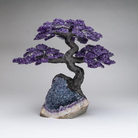 The Protection Tree // Genuine Amethyst Tree + Amethyst Matrix // Custom v.4 // XL