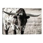 "Longhorn Portrait // Tyler Stockton (40""W x 26""H x 1.5""D)"