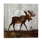 "Moose // Carl Colburn (26""W x 26""H x 1.5""D)"