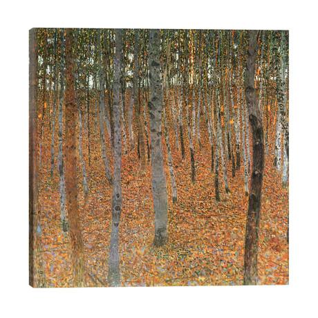 "Forest of Beech Trees // Gustav Klimt (26""W x 26""H x 1.5""D)"