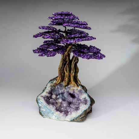 The Protection Tree // Genuine Amethyst Tree + Amethyst Matrix // Custom v.1 // XL