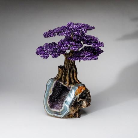 The Protection Tree // Genuine Amethyst Tree + Amethyst Matrix // Custom v.3 // XL