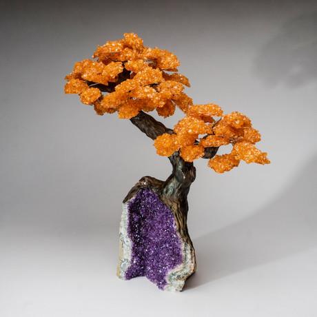 The Money Tree // Genuine Citrine Tree + Amethyst Matrix // Custom // XL