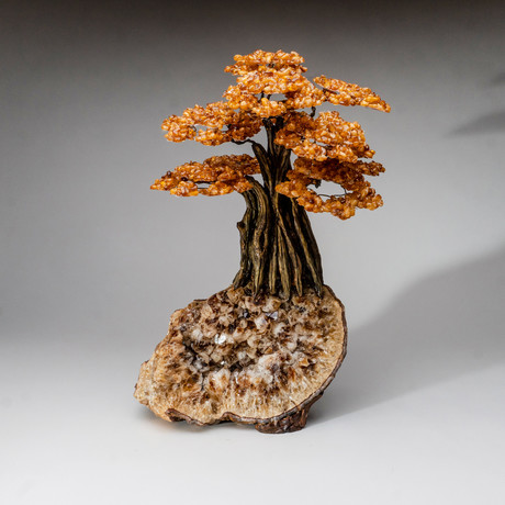 The Money Tree // Genuine Citrine Tree + Citrine Matrix // Custom // XL