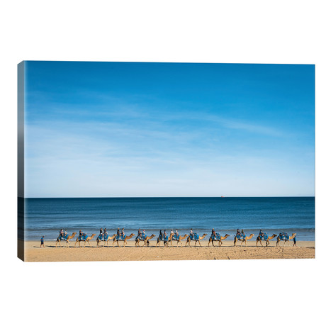 Cable Beach Camels // James Vodicka