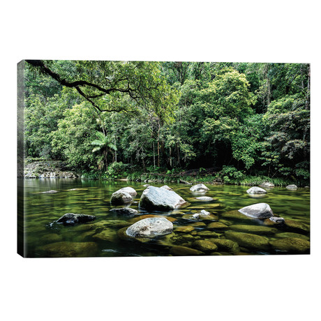 Daintree Rainforest Calm River Landscape // James Vodicka