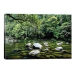 Daintree Rainforest Calm River Landscape // James Vodicka