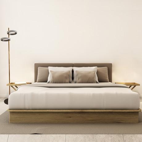 Gold Stem Floor Lamp // Two Ring